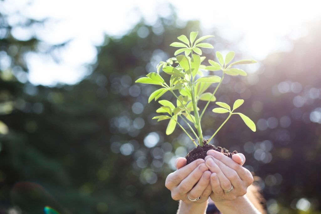 part of bdi's corporate social responsibility is a commitment to environmental protection