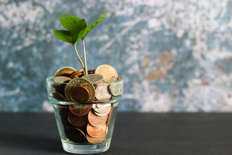 image of money in a pot with a plant growing out of it. Symbolises open banking and the money it can save.