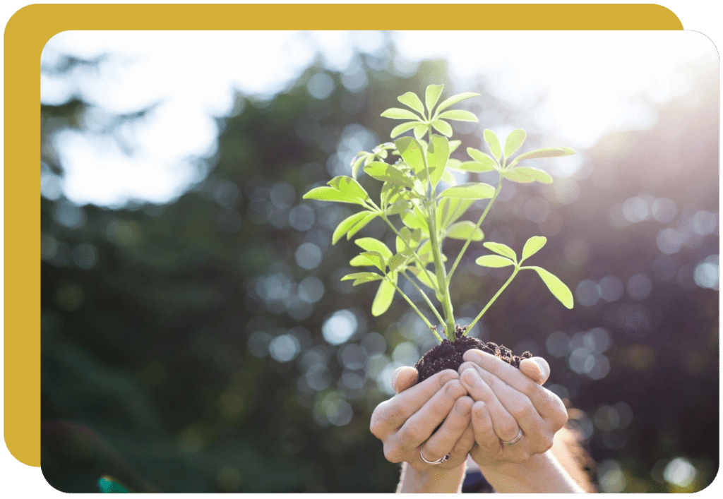bdi's corporate social responsibility exemplifies our dedication to environmental and social causes